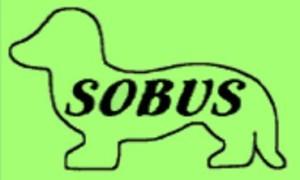 SOBUS_logo